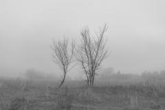 miseenscene-photography-monochrome-002