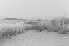 miseenscene-photography-monochrome-004
