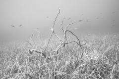 miseenscene-photography-monochrome-008